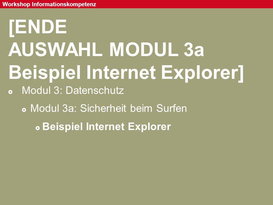 AUSWAHL MODUL 3a Beispiel Internet Explorer]